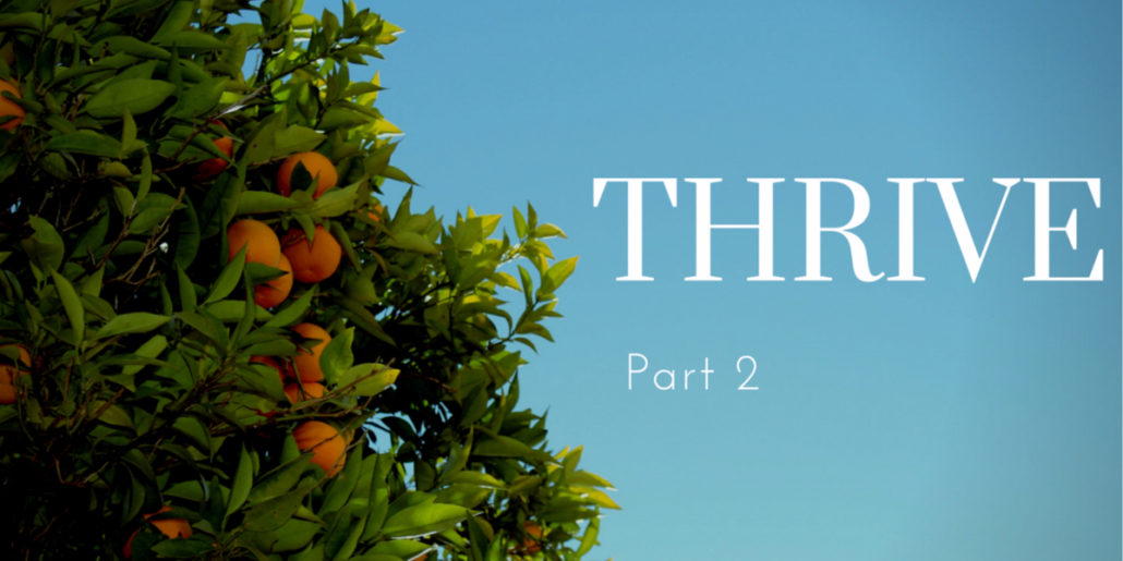 "Survive or Thrive Part 2 – ""The Difference Between Surviving and Thriving"""