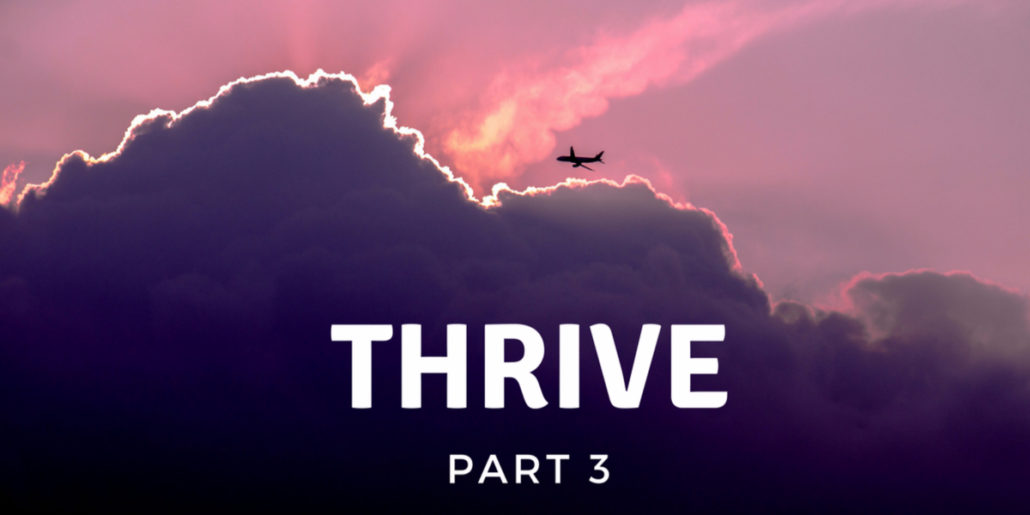 "Survive or Thrive Part 3 – ""No Permission Asked!"""